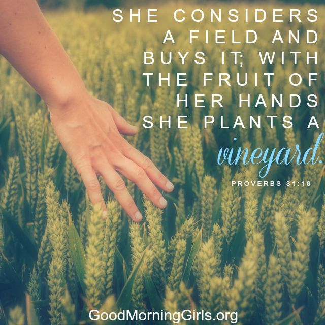 A woman's hand is touching the crop in  a field